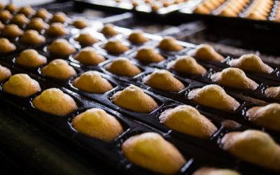 Biscuiterie Vital Ainé