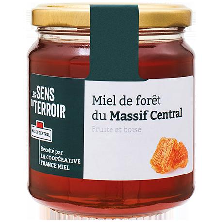 Miel de forêt du Massif central